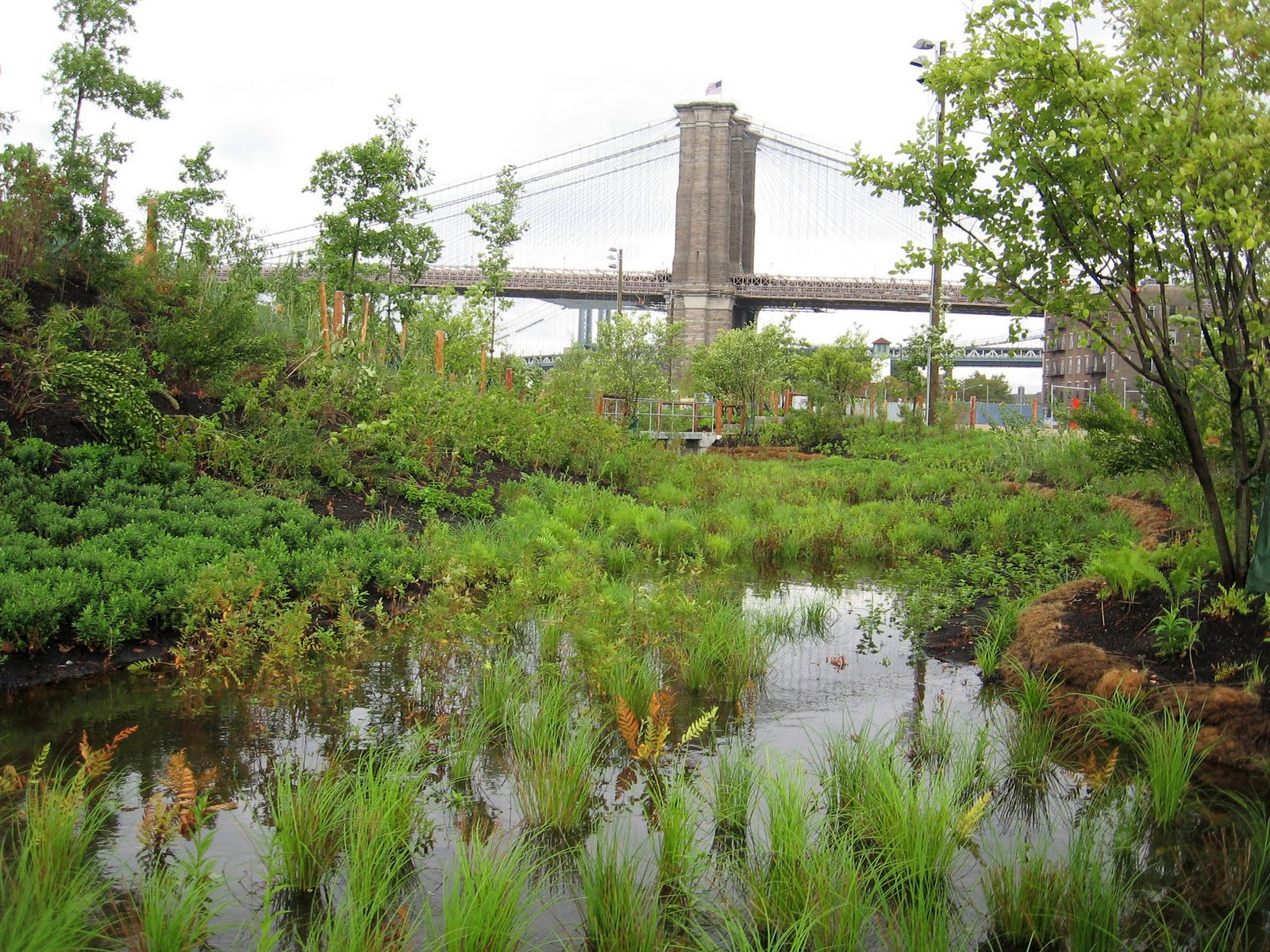 Brooklyn_bridge_park_water_MKMetz